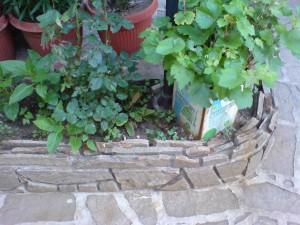 gneiss in the garden