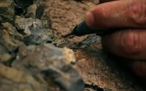 Най-старият гнайс на планетата
