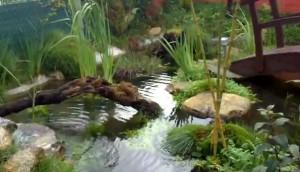 езеро в градината