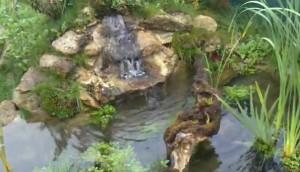 камъните в езерото