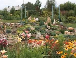 камъни в градината