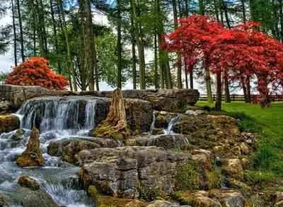 есен в японска градина